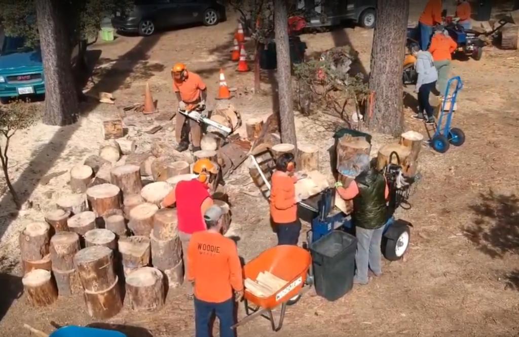 Woodies Workin